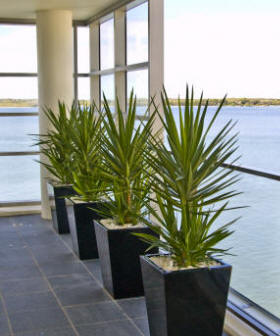 D Cor For Indoor Fountains